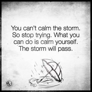 storm will pass